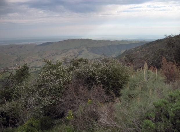 triple summit hike11