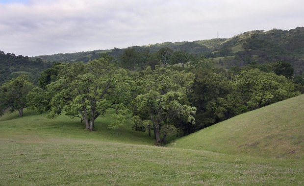 sunol backpack trail30