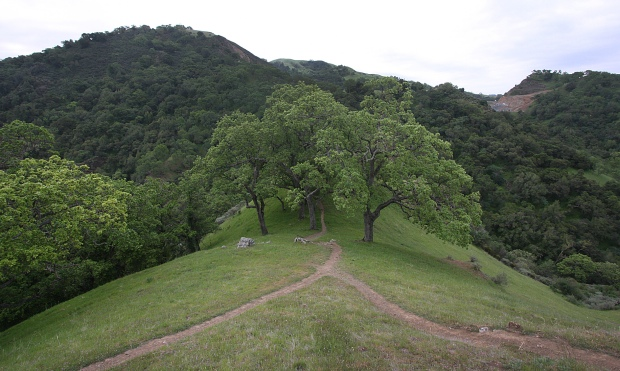 sunol backpack trail31