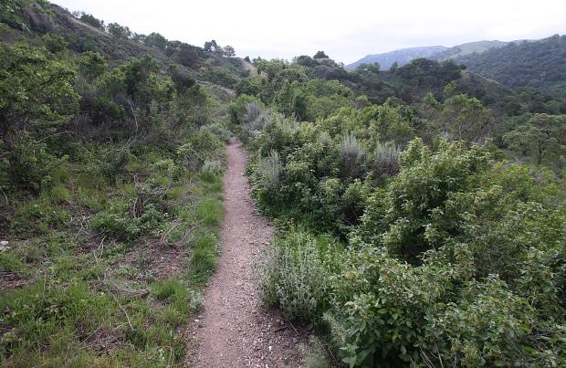 sunol backpack trail35