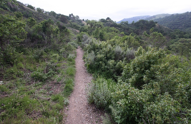 sunol backpack trail35