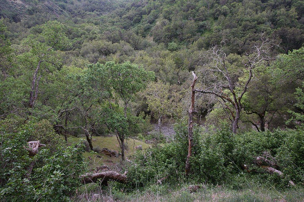 sunol backpack trail42