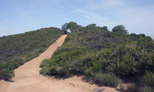 Wall Point Loop31