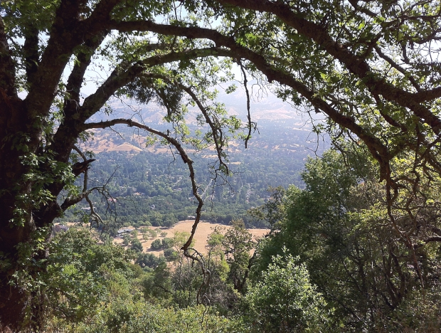 las trampas east side loop2