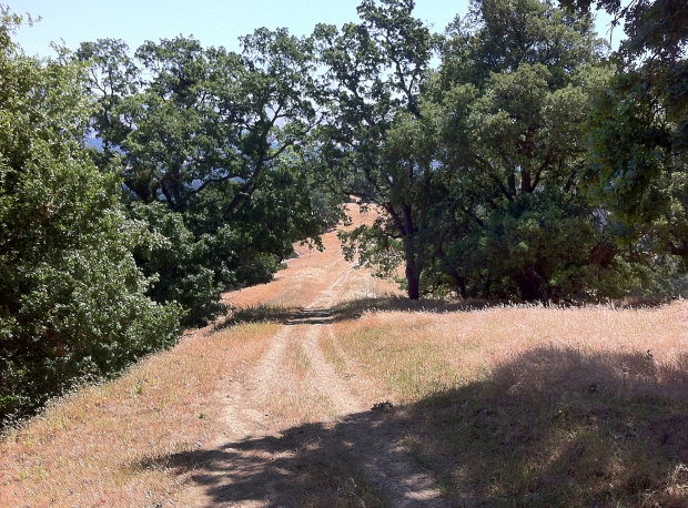 las trampas east side loop25
