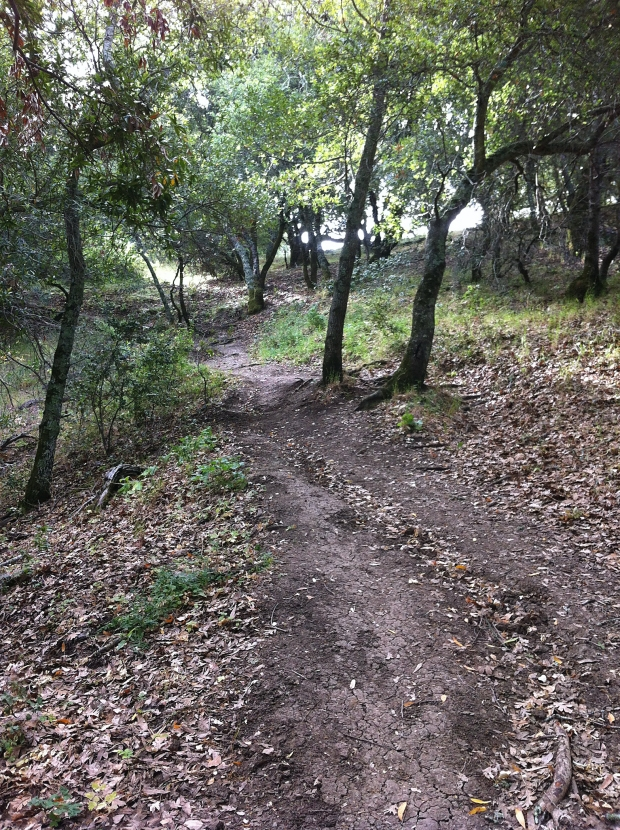 las trampas east side loop4