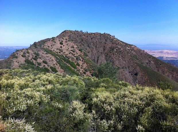 Mount Diablo Four Peaks Hike8