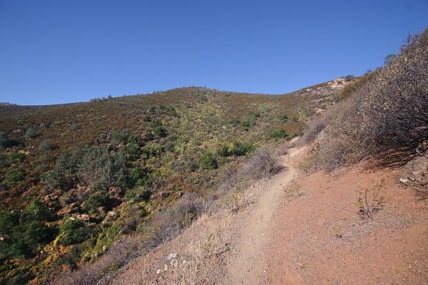 eagle peak29