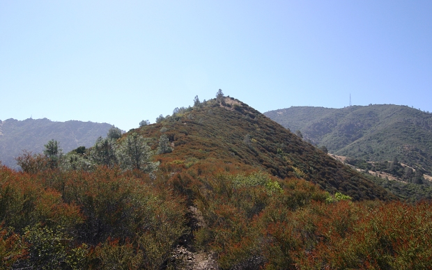 eagle peak36