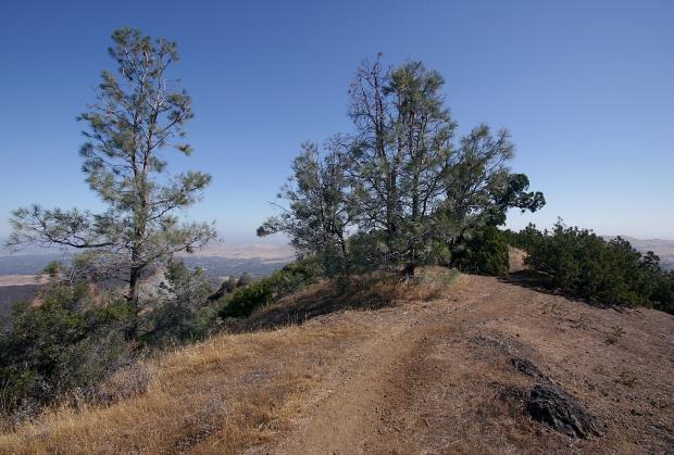 eagle peak6