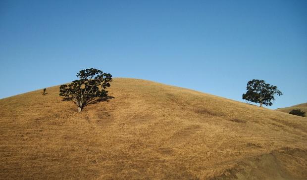 macedo ranch to summit11