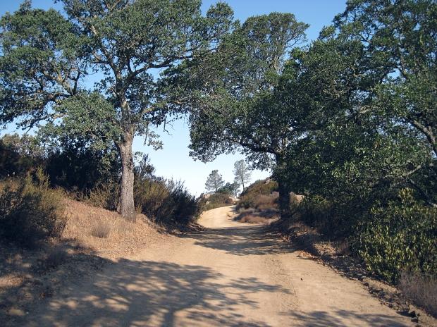 macedo ranch to summit15