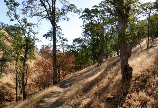 round valley18