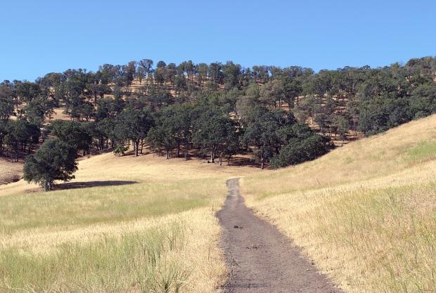 round valley24
