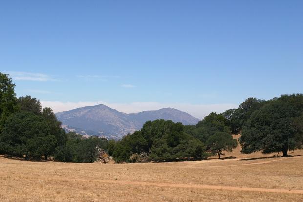 blue oak volvon loop34