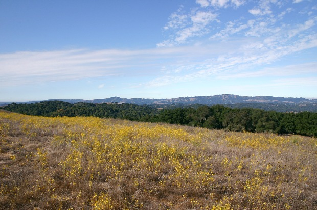 briones peak loop21