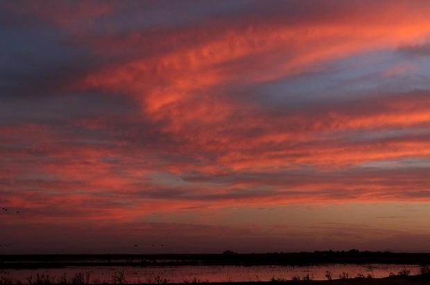 Isenberg sunset crane arrival31