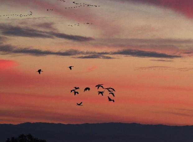 Isenberg Sunset Arrival2
