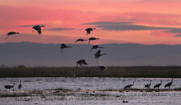 Isenberg Sunset Arrival33