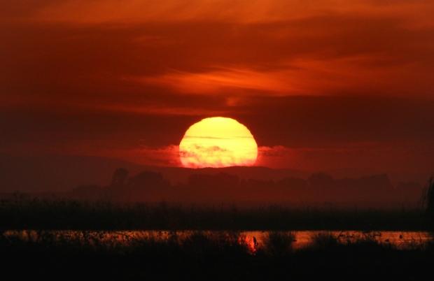 isenberg sunset1