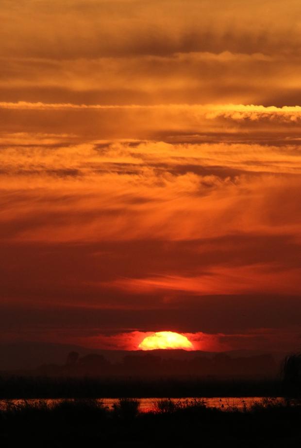 isenberg sunset2