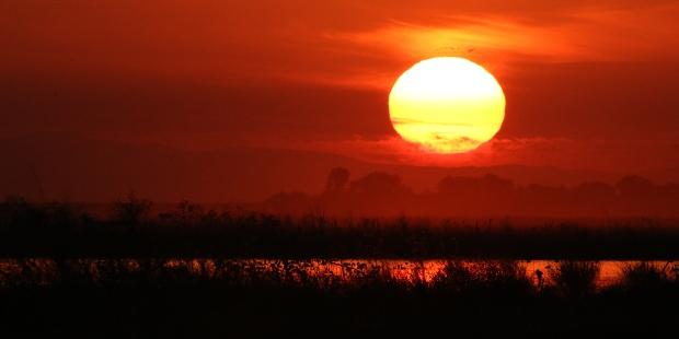 isenberg sunset3