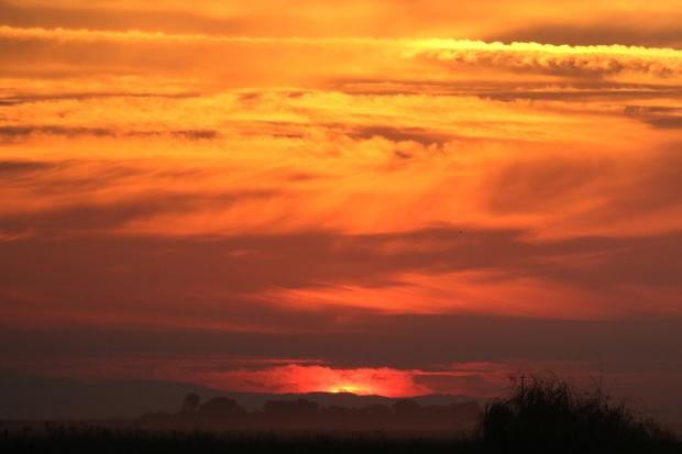 isenberg sunset4