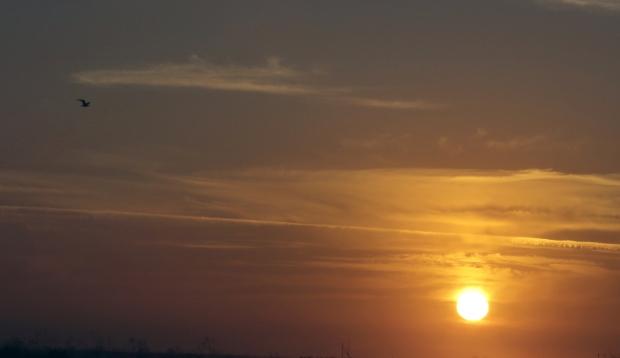 isenberg sunset6