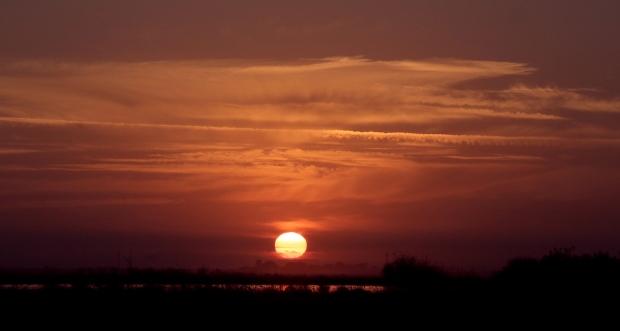 isenberg sunset8