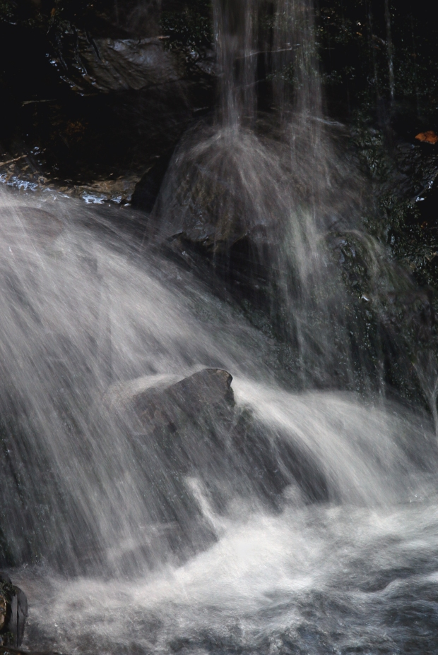 uvas canyon3