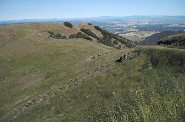mount diablo summit hike16