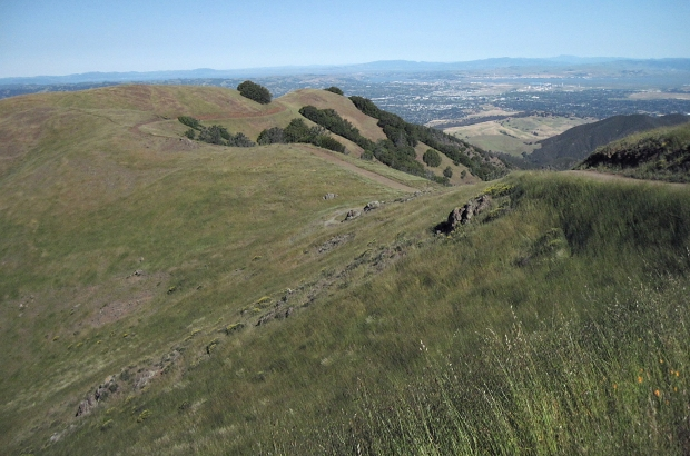 mount diablo summit hike16