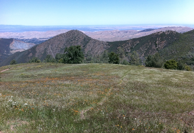 mount diablo summit hike36