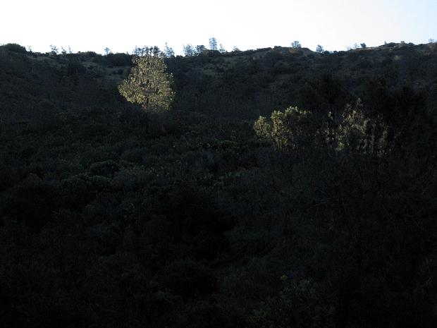 mount diablo summit hike9
