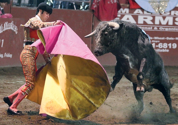 bloodless bullfights1  07-04-14