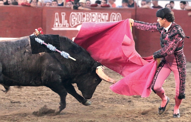 bloodless bullfights16  7-04-14