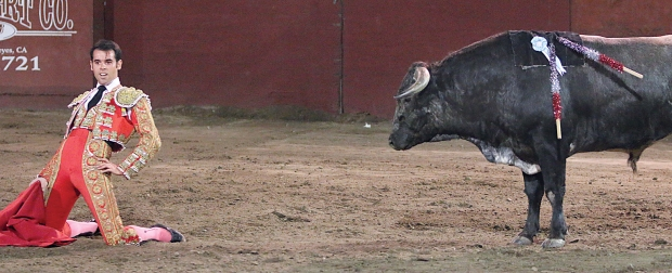 bloodless bullfights19  7-04-14