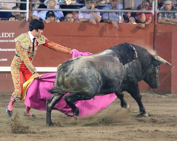 bloodless bullfights28