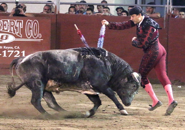 bloodless bullfights29