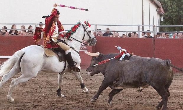 bloodless bullfights3  07-04-14