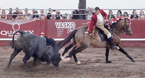 bloodless bullfights5  07-04-14