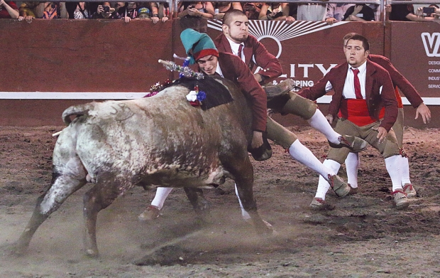 bloodless bullfights6  07-04-14