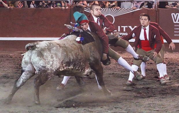 bloodless bullfights6  07-04-14