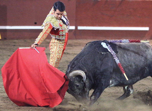 bloodless bullfights9  07-04-14