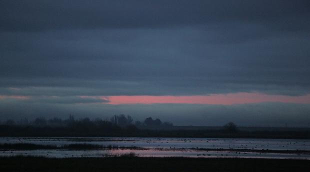 isenberg december sunrise16