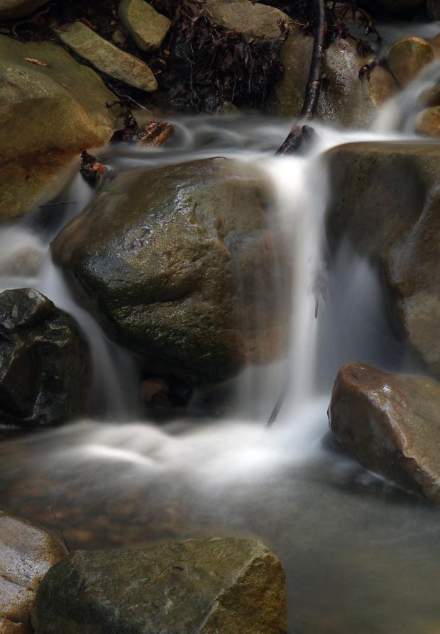uvas canyon waterfall loop33