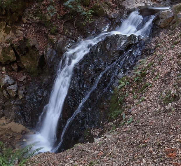 uvas canyon waterfall loop34