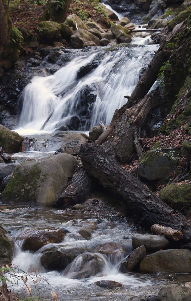 uvas canyon waterfall loop42