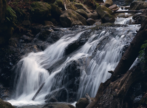 uvas canyon waterfall loop43