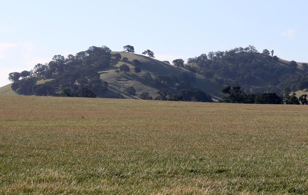 round valley murphey meadows loop21